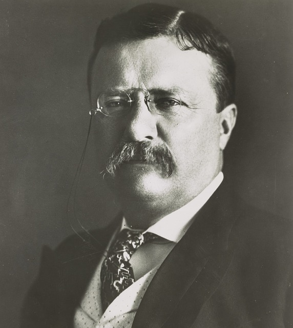 Theodore Roosevelt: The best executive has sense enough to pick good people.